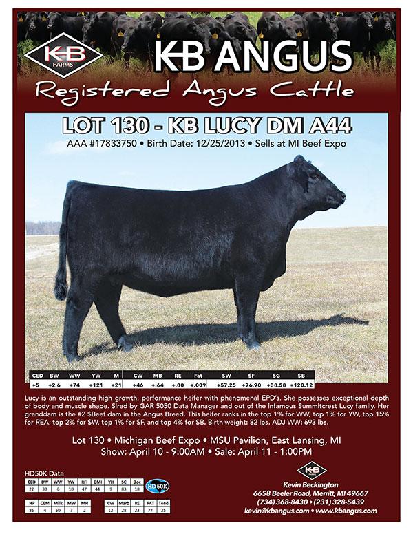 2015-beef-expo-flyer